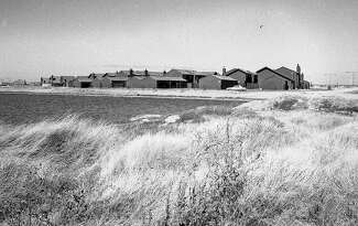 Once known as Brewer's Island, a marshy dairy farm was reborn as Foster City, beginning in the early 1960s. This 1974 photograph shows a newly completed housing tract.