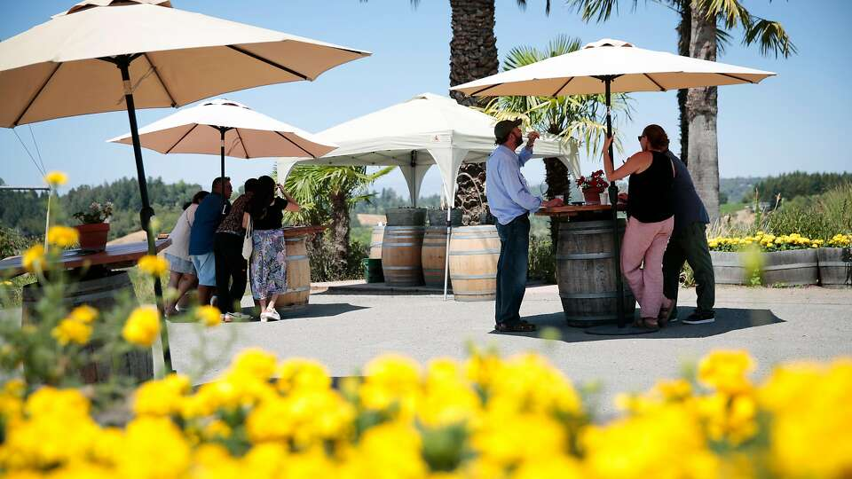 The top wineries to visit in Sonoma County