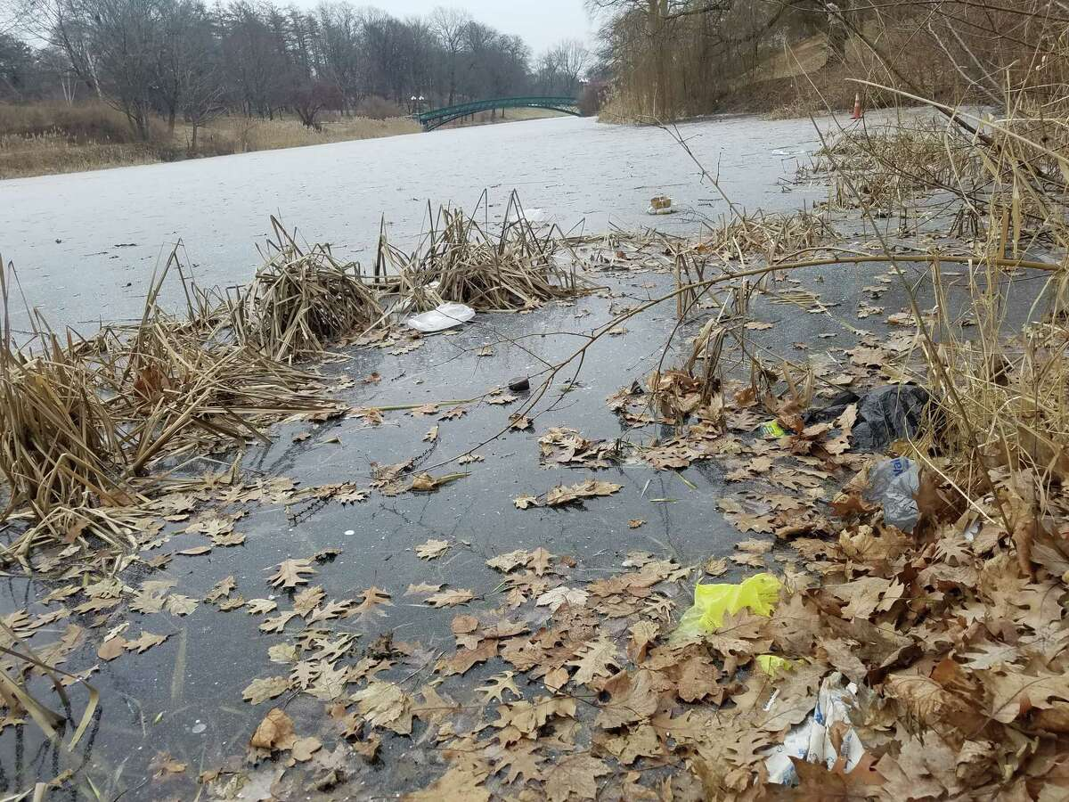 Plastic bags stuck in the ice at Washington Park Lake in Albany. Gov. Andrew Cuomo is proposing to ban plastic bags.