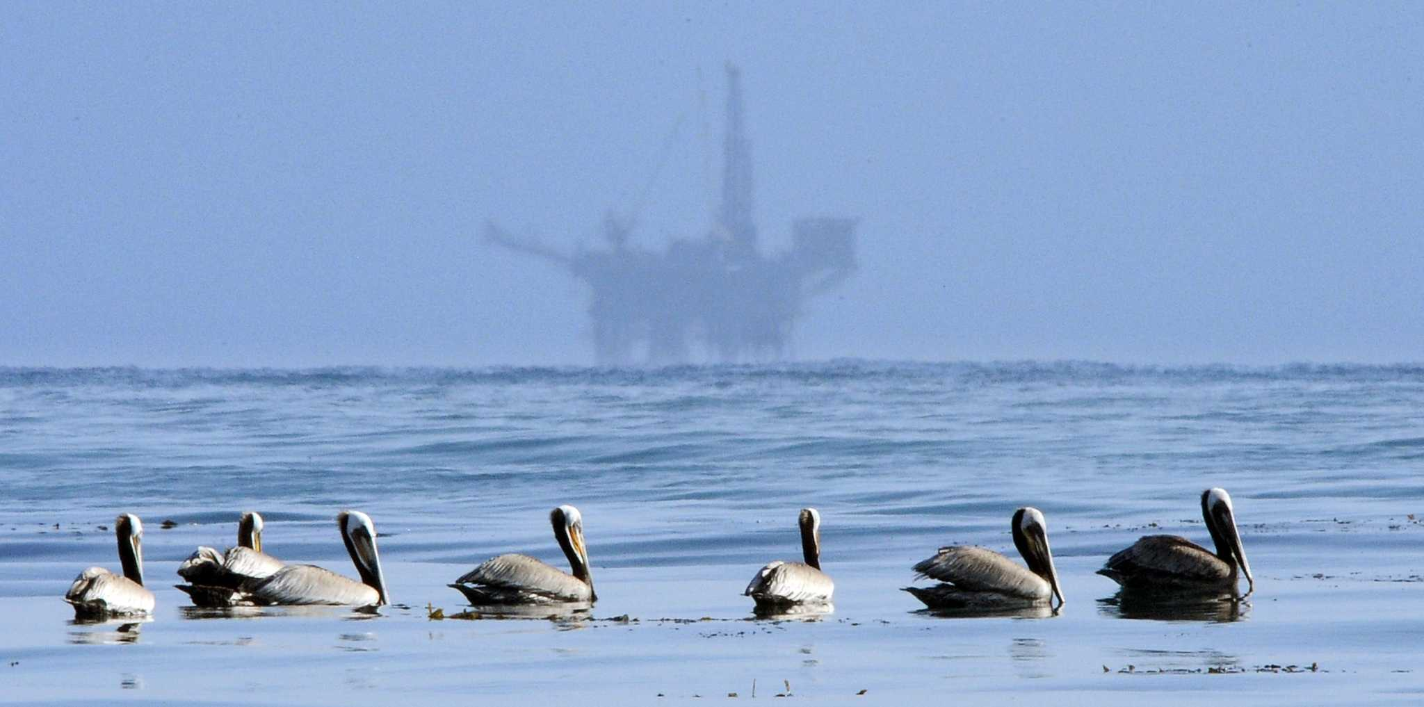 houstonchronicle.com - James Osborne - Shutdown leaves oil and gas unscathed, but for how long?