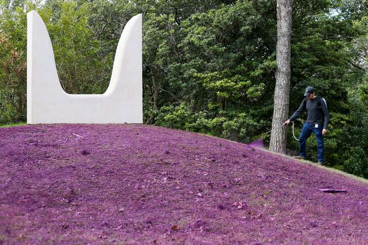 "Anastasia Pelias' installation ""mama"" includes an expanse in front of a sculpture painted kimono violet, a custom color."