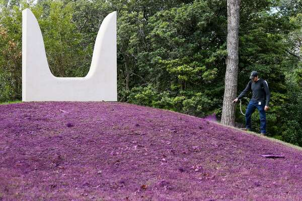 """Anastasia Pelias' installation """"mama"""" includes an expanse in front of a sculpture painted kimono violet, a custom color."""