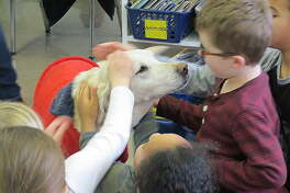 Loretta the dog came to visit students and Trinity Lutheran School Monday. Here, she meets with first-graders in Megan Langendorf's class.
