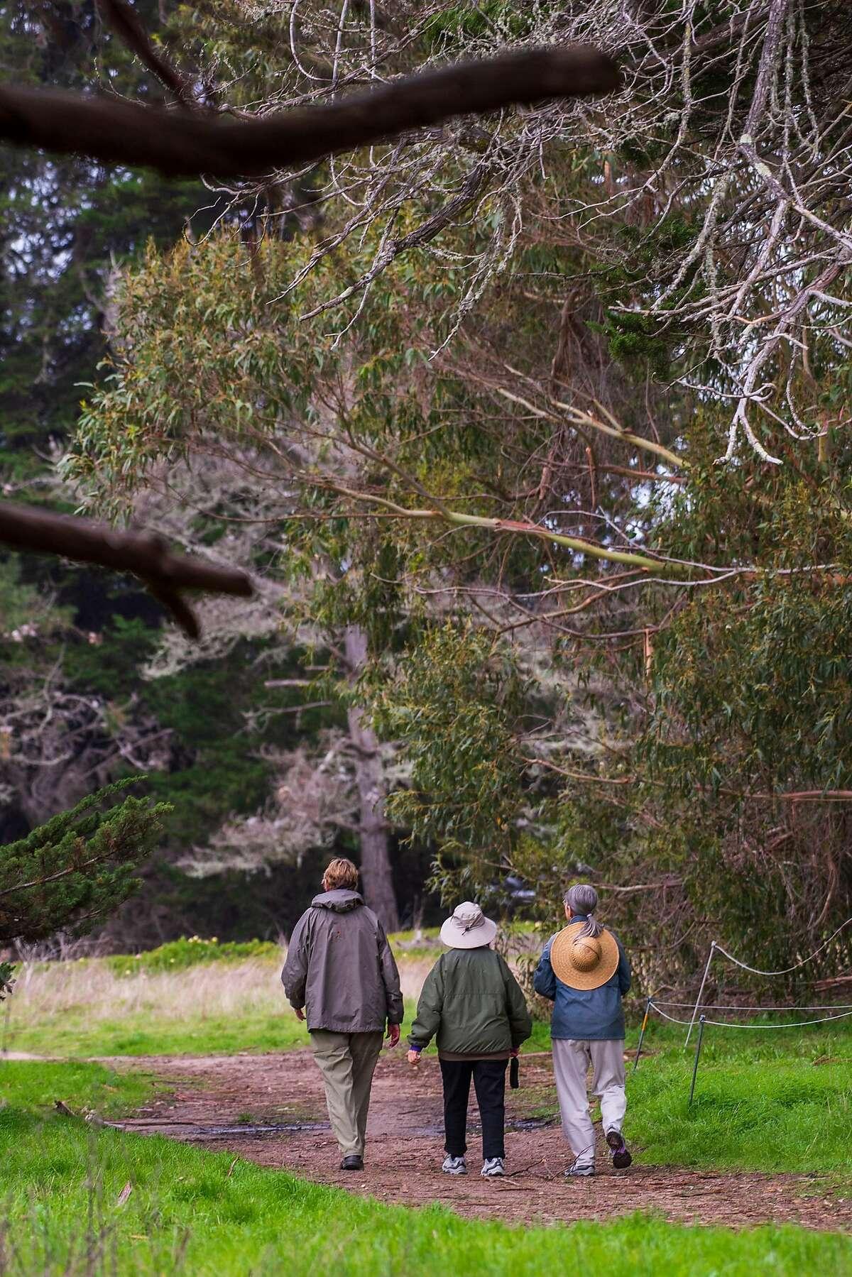 Judy Ward, right, walks with friends through Lighthouse Field State Park in Santa Cruz, Calif. on Jan. 11, 2019.