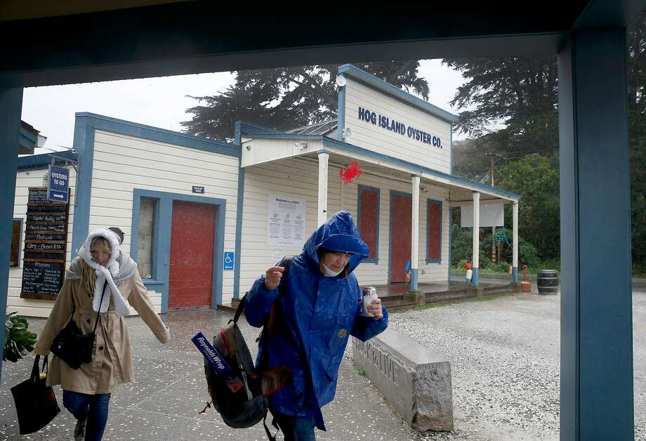 Kylie Macklin (left) and Jan Moore head back to their car after shucking oysters imported from Washington state at Hog Island Oyster Farm in Marshall, Calif. on Wednesday, Jan. 16, 2019. Harvesting on Tomales Bay has been temporarily suspended following reports of a few customers becoming infected with norovirus after consuming the oysters. Photo: Paul Chinn, The Chronicle