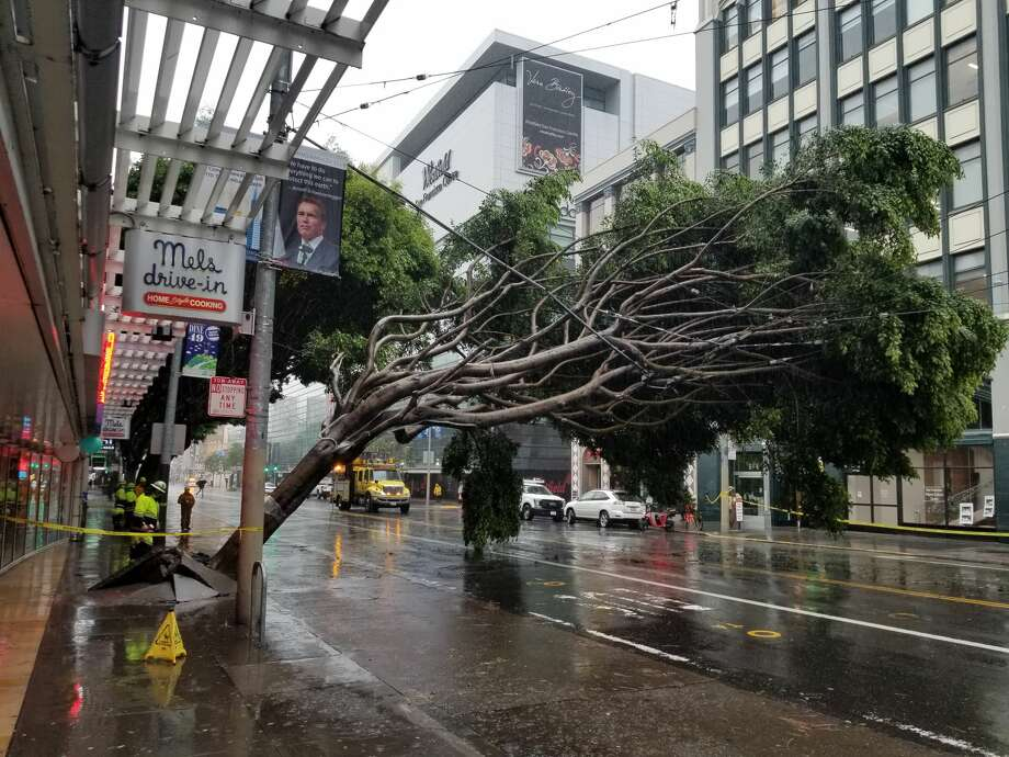 Workers inspect damage after a large tree fell on Muni lines on Mission St. near 4th St. in San Francisco on Thursday, Jan. 17, 2019. Photo: Chris Preovolos