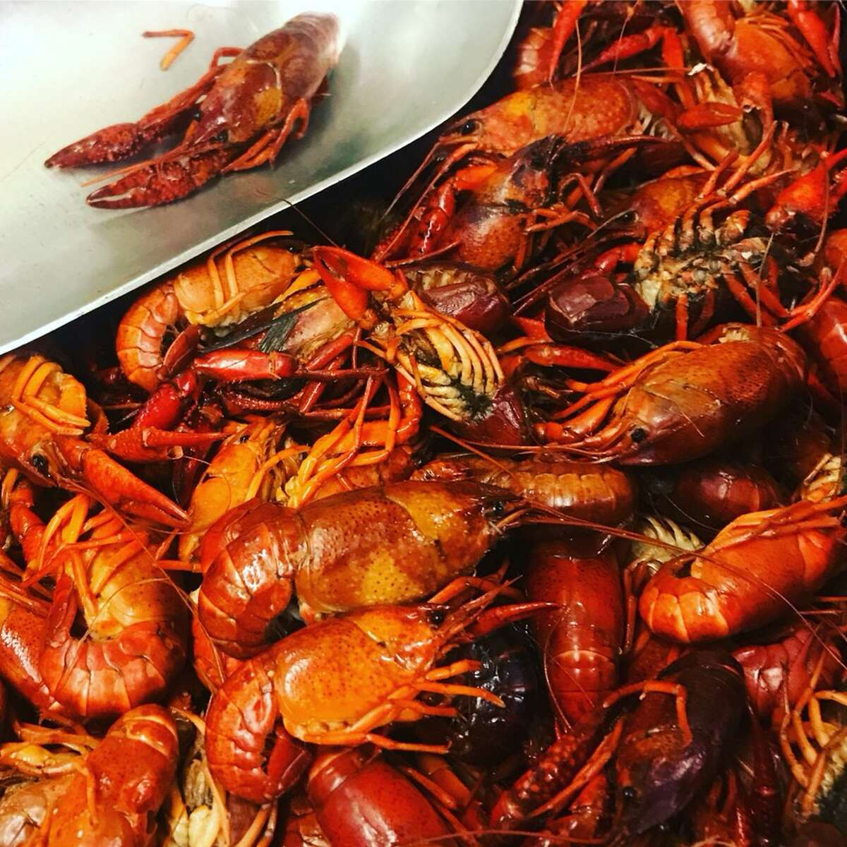 Casian Crawfish5314 Telephone Road, Houston713-360-7610Keri D's review:I have eaten here many time and not once was I disappointed- crawfish are seasoned very well - we like the