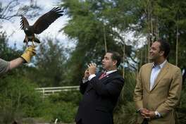 Rep. Henry Cuellar, a Democrat, reacts to a a bay wing hawk flying over him and fellow congressman Rep. Will Hurd, a Republican, at Mitchell Lake in October. The congressmen are part of a bipartisan group of Texas lawmakers seeking to strengthen the ties of the U.S. energy sector to Mexico even as the political battle over the border wall partially shut down the federal government