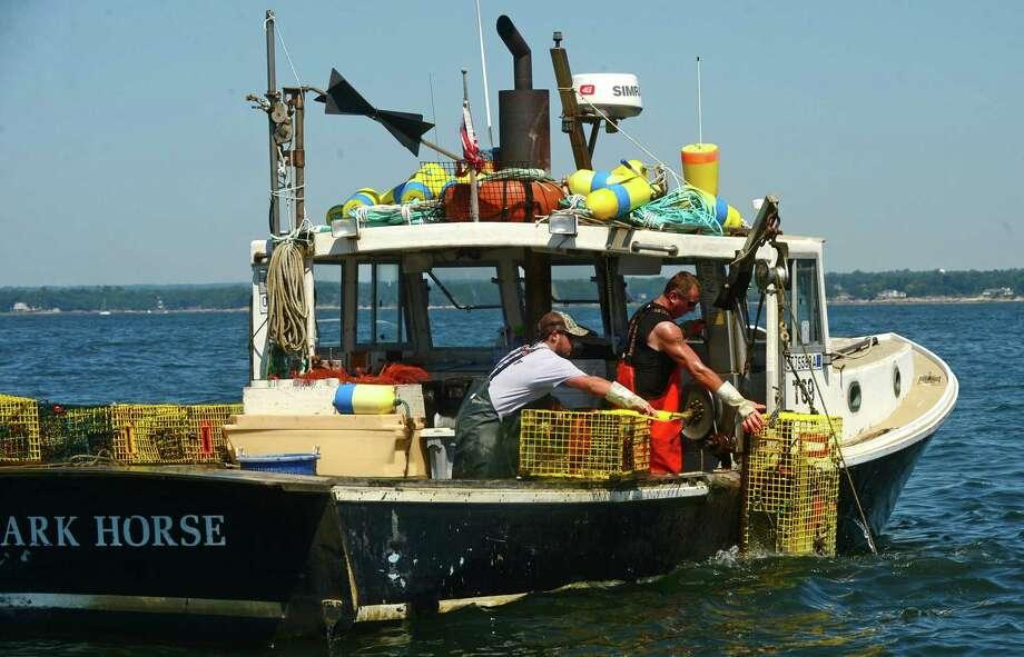 Groton's Garbo Lobster has announced plans to move to Maine. Photo: Erik Trautmann / Hearst Connecticut Media / Norwalk Hour