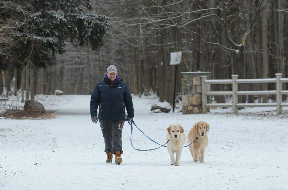 Norwalk dog walker Kate Deforge trods through the light snow at Cranbury Park with golden retrievers Charlie and Austin on Friday in Norwalk. Photo: Erik Trautmann / Hearst Connecticut Media / Norwalk Hour