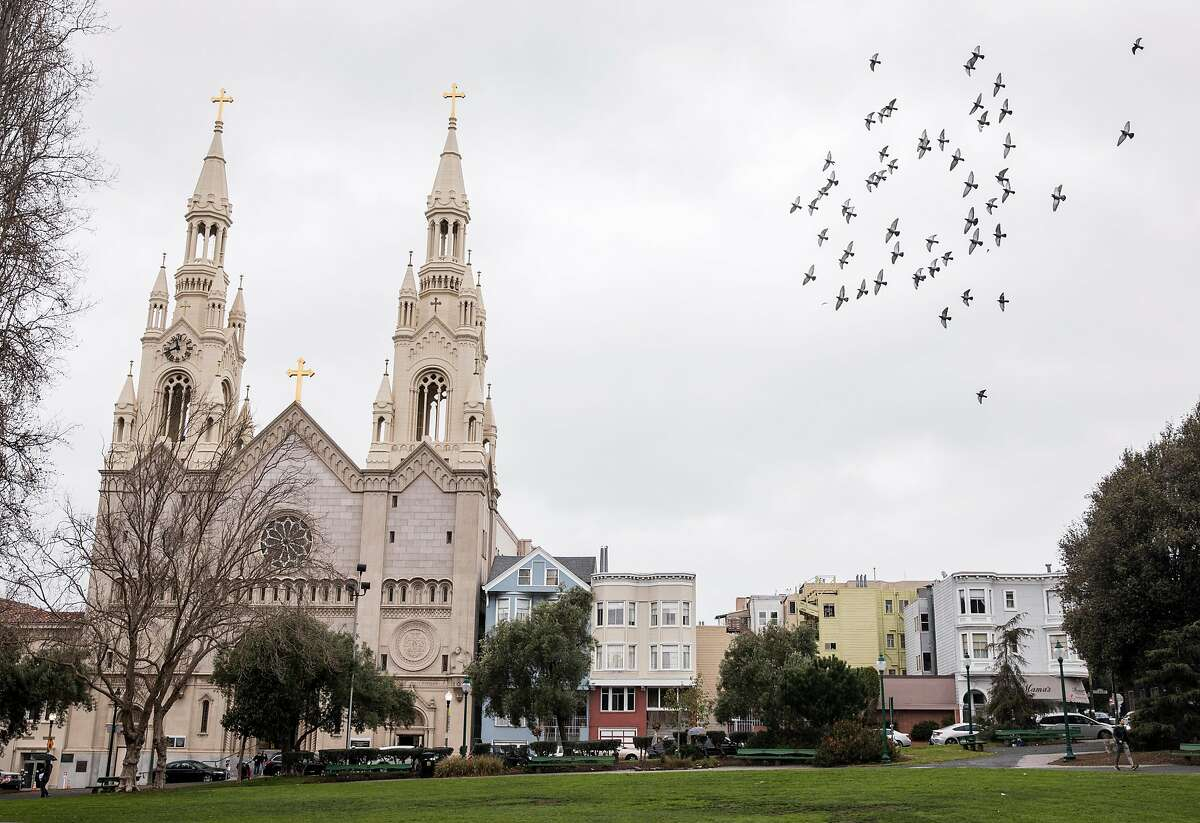 Birds fly past Saints Peter and Paul Church across from Washington Square Park in the North Beach neighborhood of San Francisco, Calif. Saturday, Jan. 5, 2019.