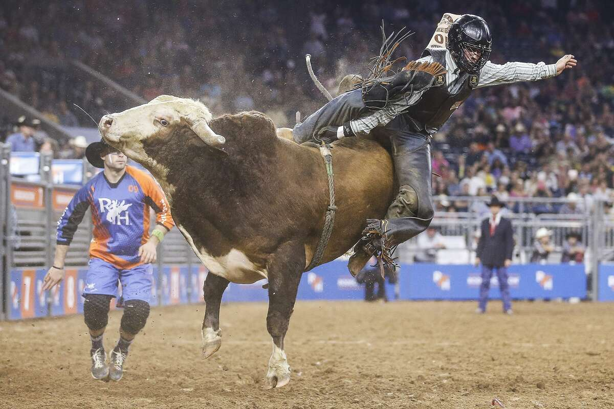 Monday, February 25 to Sunday, March 17Houston Livestock Show & Rodeo at NRG Park Details: Get ready for 21 days of rodeo competitions, carnival rides and live music acts from Cardi B to George Strait. Times vary. Tickets:$15 per adult and $5 per kid for Rodeo grounds passes. Concerts range from $20 to $300 per person.RELATED: RodeoHouston 2019: Cardi B, Camila Cabello, Kacey Musgraves, Zedd, Panic! At the Disco