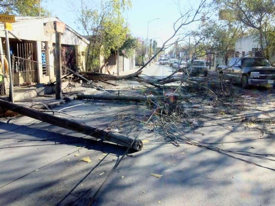 Árboles caídos y semáforos sin funcionar en Nuevo Laredo, México, fue el saldo que dejó un fuerte ventarrón que azotó la ciudad desde el sábado por la madrugada. Photo: Foto De Cortesía /Gobierno De Nuevo Laredo