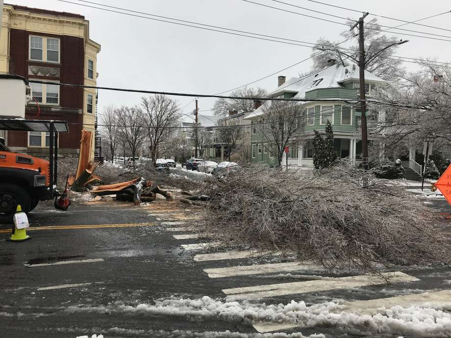 A tree down at the intersection of Avon and Orange streets in New Haven on Sunday, Jan. 20, 2019. Photo: Isabel Hirsch / Submitted Photo