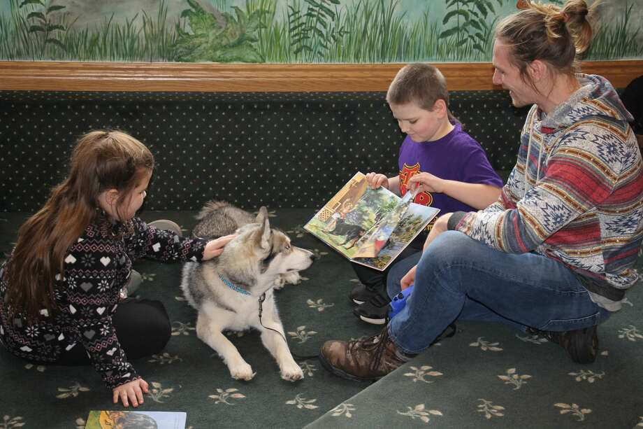 Children got the opportunity Saturday to read to a friendly Siberian Husky named Akuna at the Bad Axe Library. Photo: Seth Stapleton/Huron Daily Tribune