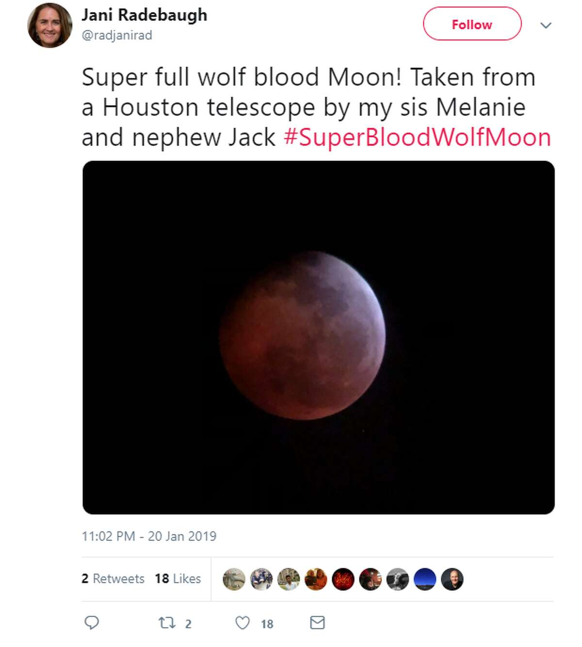 Houston residents pulled up a chair in their front lawn or ran to the highest point at their apartment building to catch the best glimpse of the Super Blood Wolf Moon eclipse. As you can see, some got better views than others.