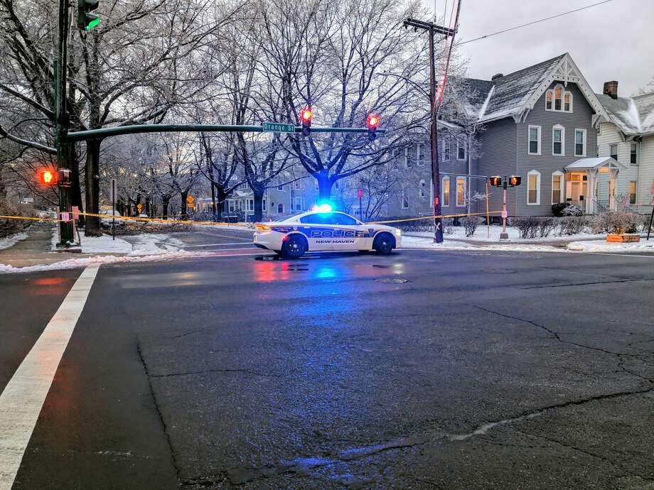 A New Haven police car blocks off Edwards Street at Orange Street on Sunday, Jan. 20, 2019 for downed trees. Photo: Derek Turner / Hearst Connecticut Media