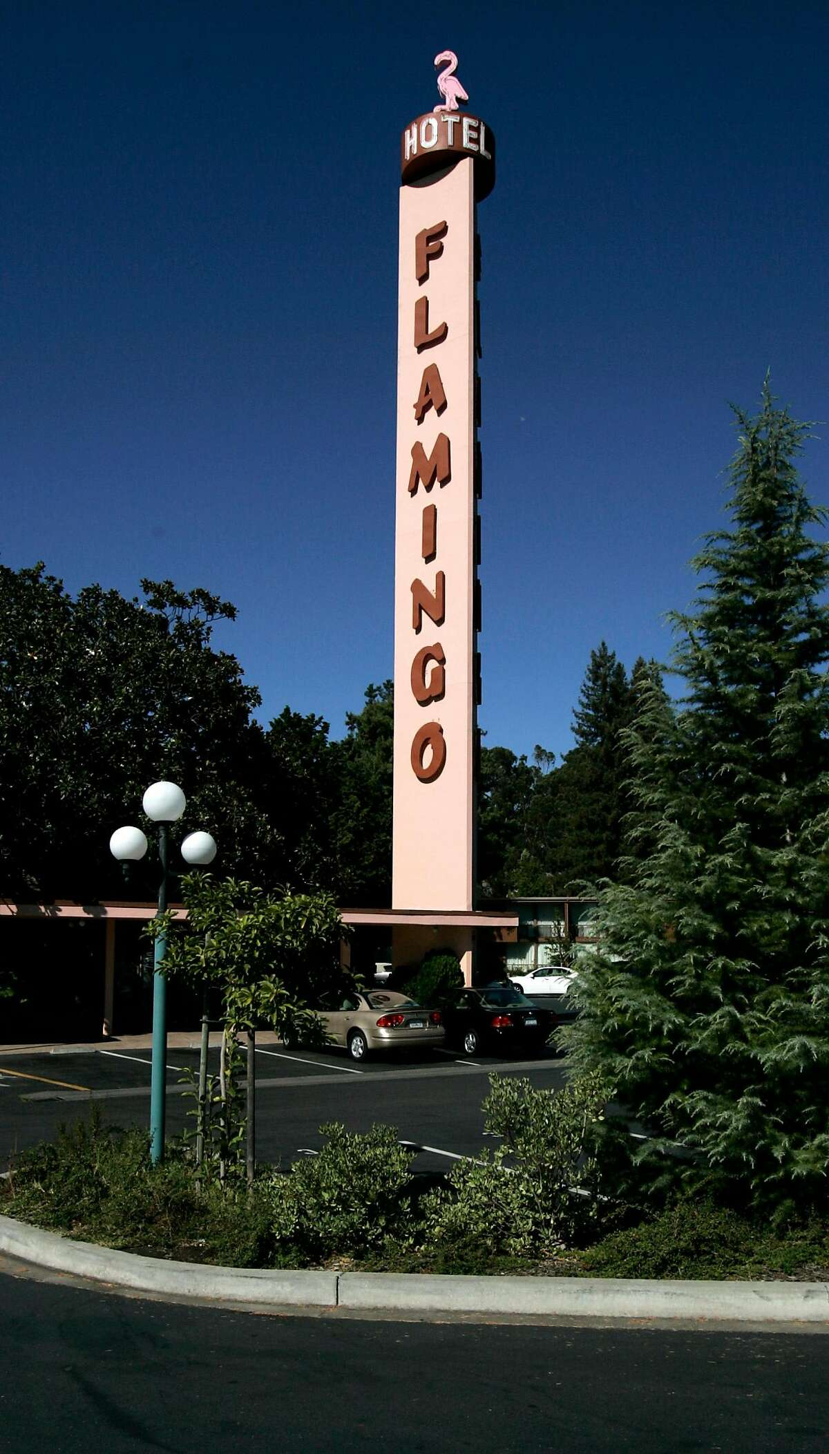 FLAMINGO02_075_kk.jpg The Flamingo's famous sign rose above the legal hight limit in Santa Rosa. The city made an exception due to the Falmingo's historic place in the community. We visit the Flamingo Hotel in Santa Rosa, a hotel still embracing the 50's moderne style. Photo by Kim Komenich in Santa Rosa