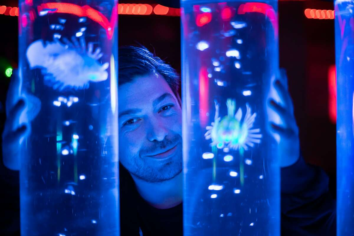 Andrew McClintock poses with the fish decorations at EZ5 bar on Saturday, Jan. 19, 2019, in San Francisco, Calif.