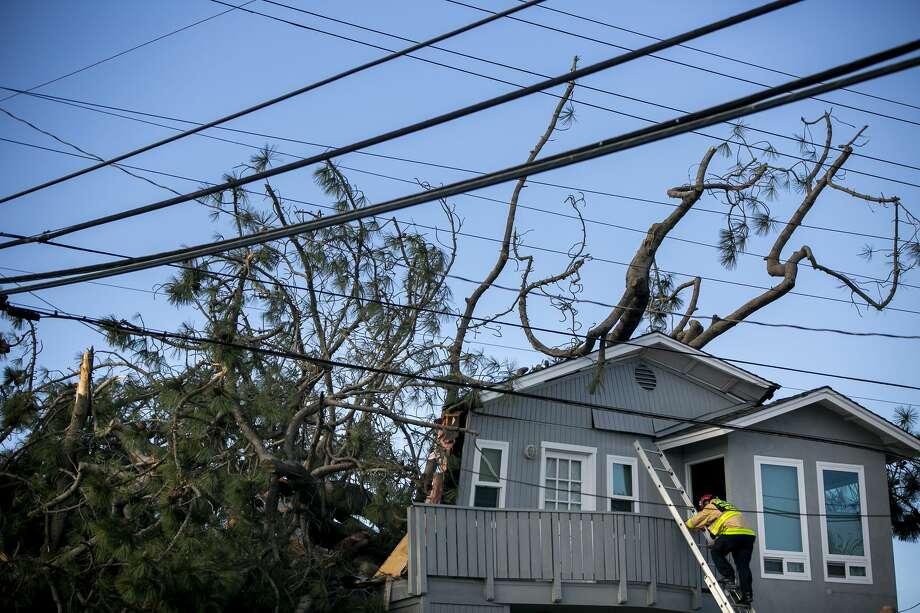 North Dakota couple killed by fallen tree in San Diego