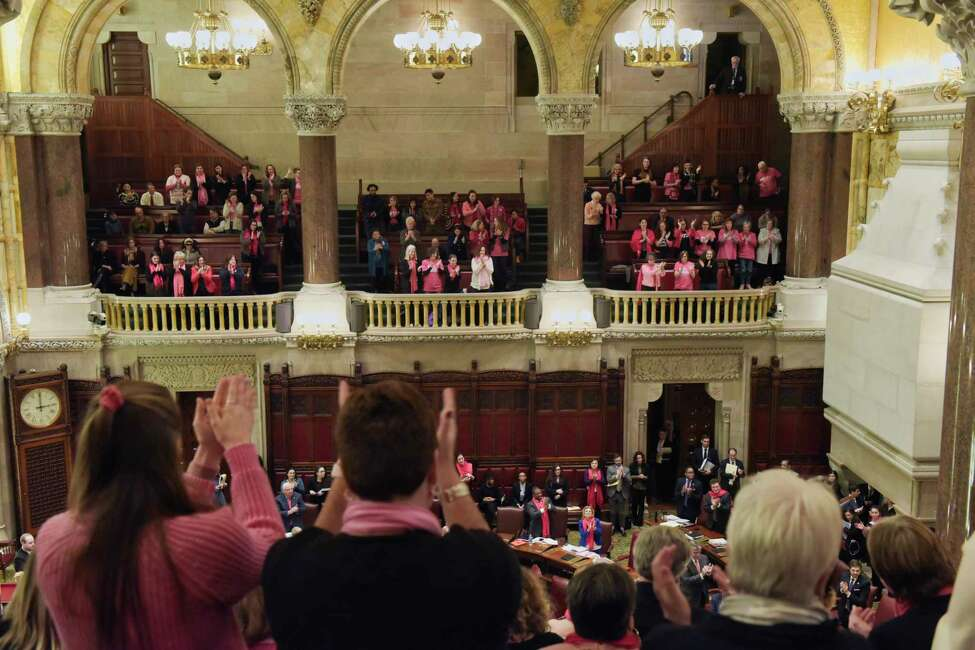 People in the gallery of the State Senate stand to cheer after the Senate passed the Comprehensive Contraception Coverage Act (CCCA), on Tuesday, Jan. 22, 2019, in Albany, N.Y. (Paul Buckowski/Times Union)