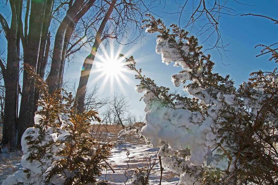 Bright blue skies and newly fallen snow created these beautiful scenes at the Port Crescent State Park Day Use area following a recent storm. Photo: Bill Diller/For The Tribune
