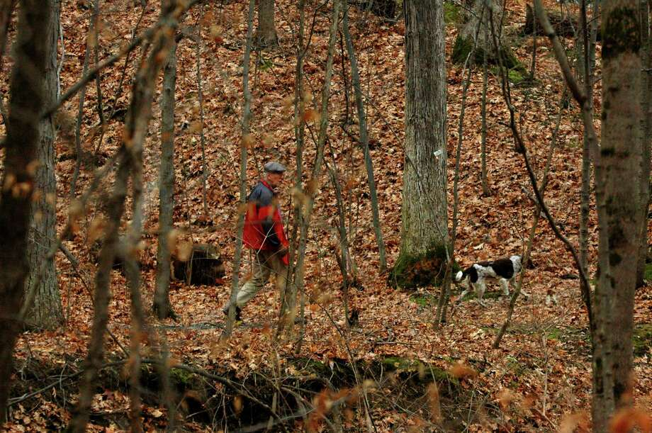 Times Union Staff Photo by Michael P. Farrell       George Wright walks with dog Bridget  through the Schenectady Museum Nature Preserve in Niskayuna, New York Tuesday November 29 ,2005. The Schenectady museum is in discussion to sell the museum's 110-acre nature preseve on River Road. The N.Y.S  wants to convert the forested area into the county's first state park. Photo: MICHAEL P. FARRELL, Albany Times Union / ALBANY TIMES UNION