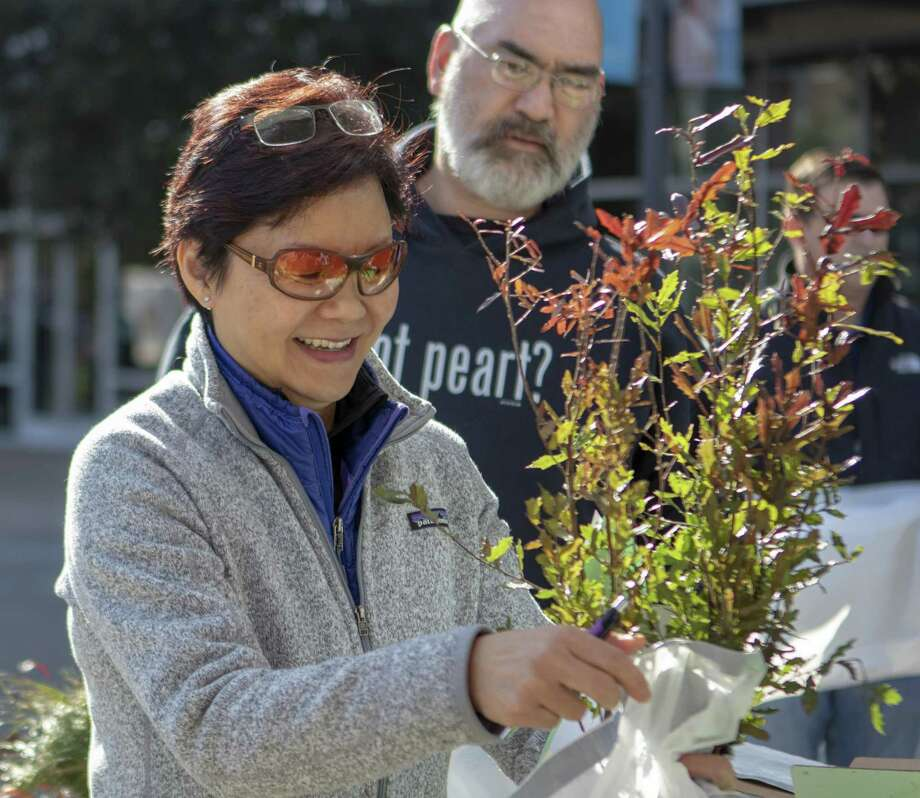The Woodlands resident Wing Schensema receives a free tree seedling during The Woodlands Arbor Day Tree Pickup on Saturday. Photo: Cody Bahn, Houston Chronicle / Staff Photographer / © 2018 Houston Chronicle