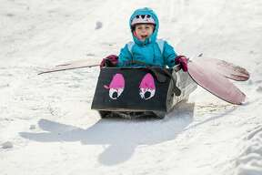 Kids race down the sledding hill in homemade cardboard sleds on Saturday, Jan. 26, 2019 at City Forest. (Katy Kildee/kkildee@mdn.net)