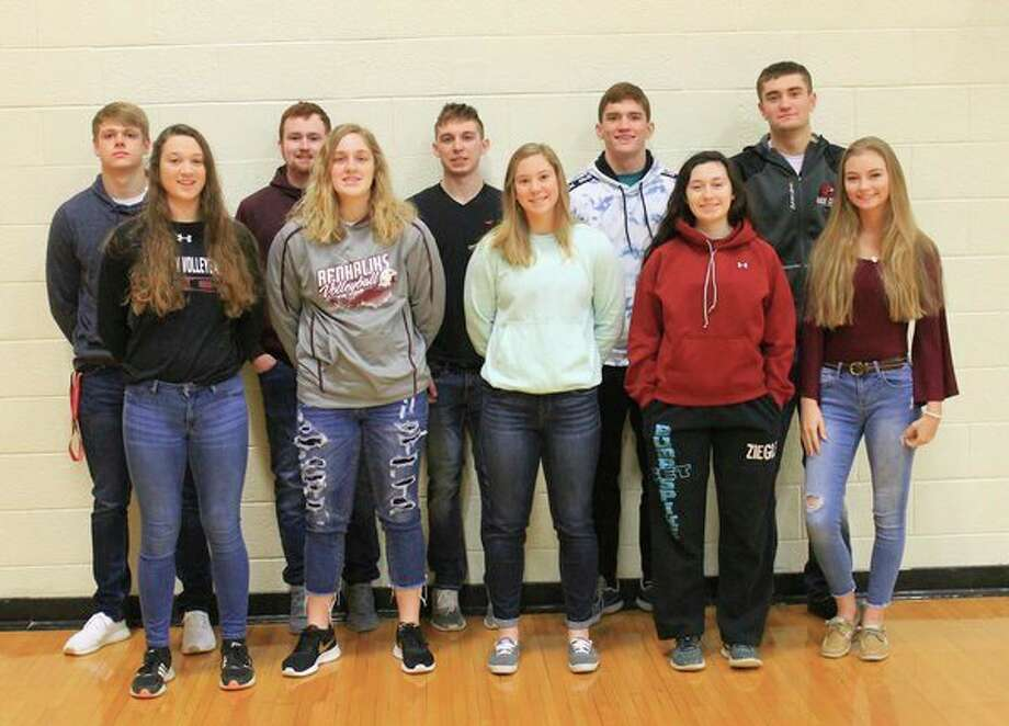 Cass City High School recently announcedits queen and king candidates. They are (front row from left): Hailey Schmotzer, Jalene Krol, Brittany Hamilton, Kelly Ziegler and Danika Focken; (Back row): Jarod Naegele, Ethon Fetterhoff, Gabriel Farver, Lucas Stern and Zackary Beecher. (Submitted Photo)