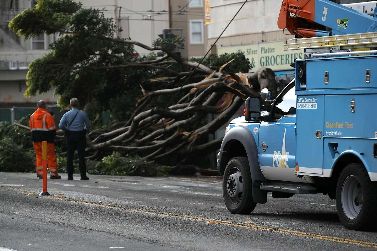 SAN FRANCISCO, CALIFORNIA - JANUARY 17: A Pacific Gas & Electric (PG&E) worker surveys a tree that came down on utility wires on January 17, 2019 in San Francisco, California. PG&E announced that they are preparing to file for bankruptcy at the end of January as they face an estimated $30 billion in legal claims for electrical equipment that might have been responsible for igniting destructive wildfires in California. (Photo by Justin Sullivan/Getty Images)