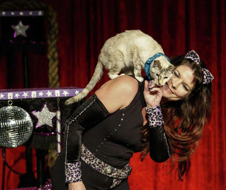 Samantha Martin and her Amazing Acro-Cats will perform at MATCH on Friday and Saturday. Photo: Karen Warren, Staff / Houston Chronicle / © 2015  Houston Chronicle