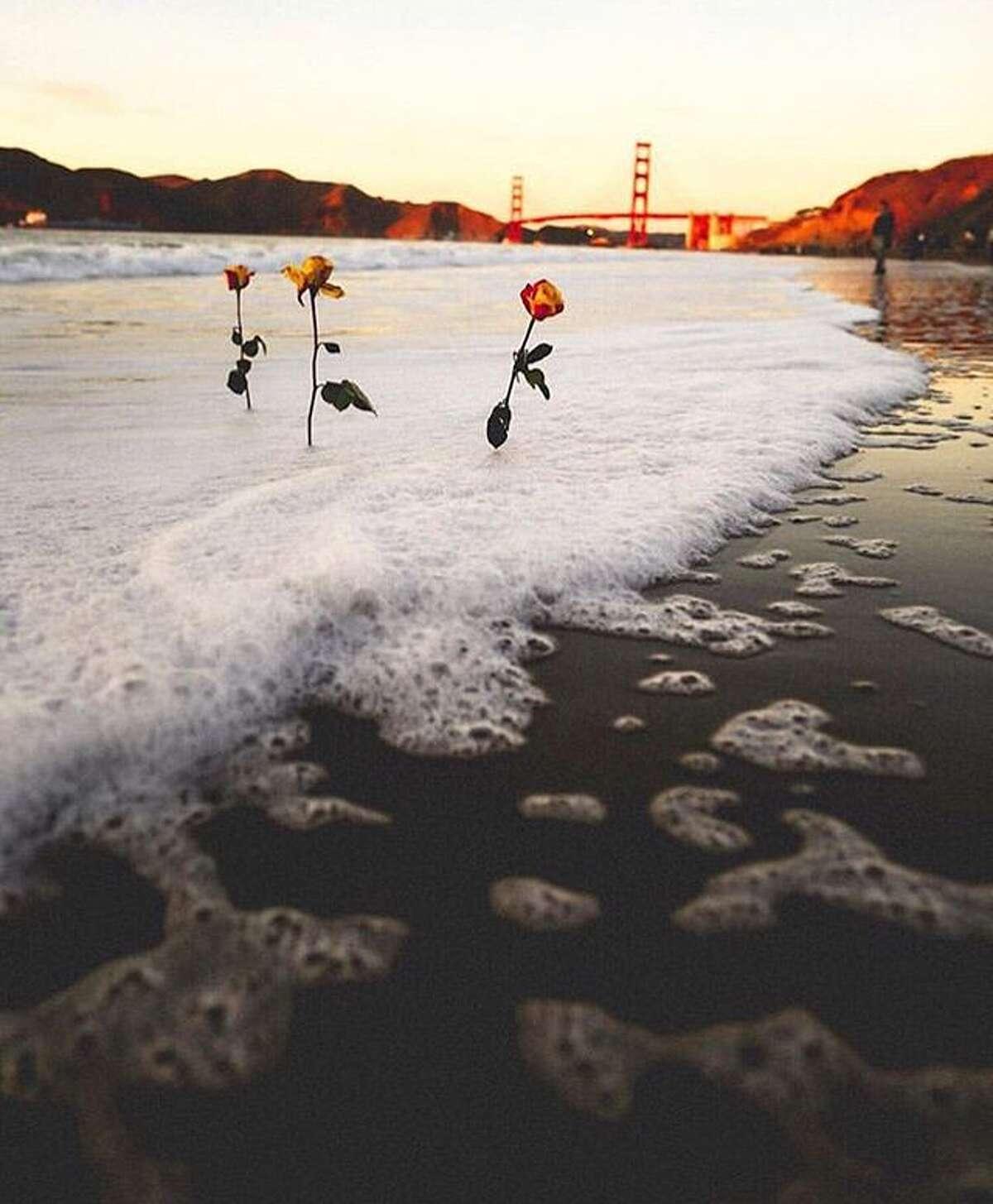 @_blvck_bvndit captured this romantic scene near the Golden Gate Bridge.