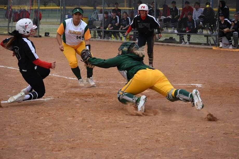 The Palominos softball team suffered defeat for the first time this season as it lost both of its games Saturday falling to 5-2. Photo: Courtesy Of Laredo College Athletics