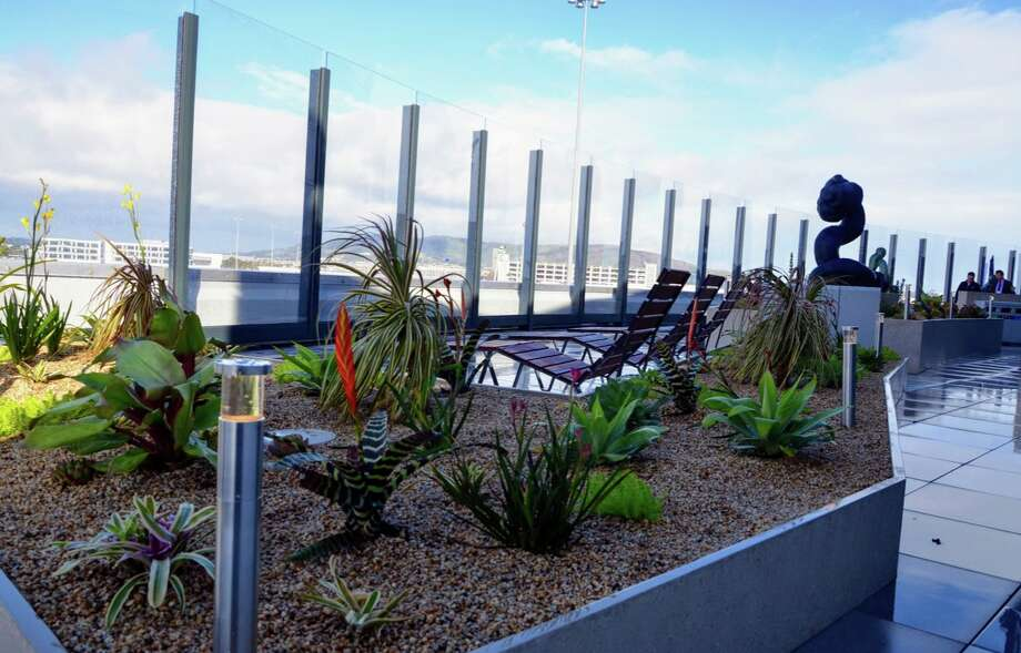 A brand new, 3,000 square foot observation deck with plants, sculpture, seats and dramatic views now open at SFO's International Terminal G side Photo: Chris McGinnis | Tim Jue