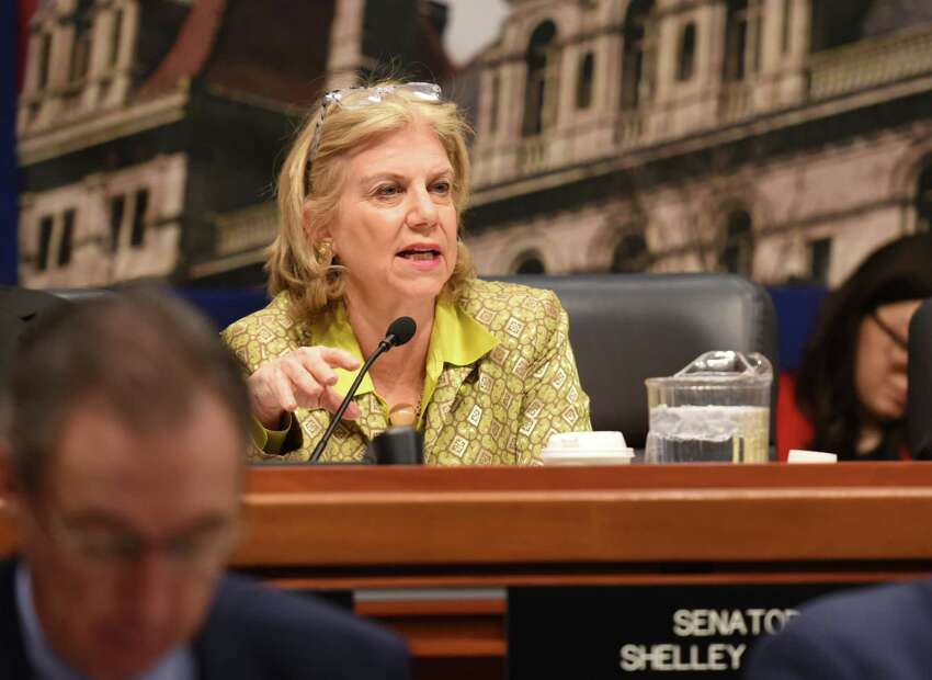 Senator Shelley Mayer speaks during the education budget hearing Wednesday, Feb. 6, 2019 at the Legislative Office Building in Albany, NY. (Phoebe Sheehan/Times Union)