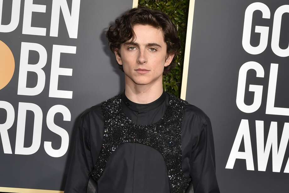 """It was my first interaction with a celebrity. It was excellent!"" Houstonian Alankrutha Giridhar says of sitting next to Timothee Chalamet on a recent three-hour flight.(Photo by David Crotty/Patrick McMullan via Getty Images)>>> Click through to see more details about  Giridhar's flight with Timothee Chalamet. Photo: David Crotty/Patrick McMullan Via Getty Image"