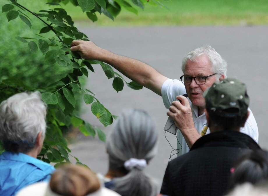 Greenwich Tree Warden Bruce Spaman shows different characteristics of leaves on a tree during the Tree Walk at Byram Park in the Byram section of Greenwich, Conn. Sunday, Sept. 9, 2018. Hosted by the Greenwich Tree Conservancy, the walk helped folks identify the many stately long-standing trees of Byram Park by describing the trees' identifying characteristics. Photo: Tyler Sizemore / Hearst Connecticut Media / Greenwich Time