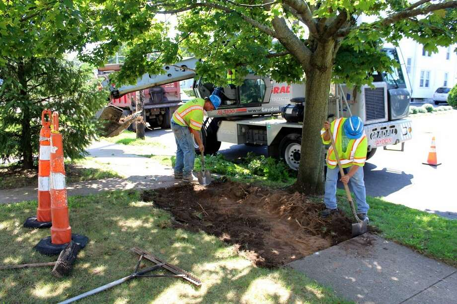 An excavation crew from the city's sidewalk contractor, Elm City Materials Inc. of Spring Street, repairs a section of sidewalk on Savin Avenue near Brown Street in this file photo. Photo: Michael P. Walsh Photo