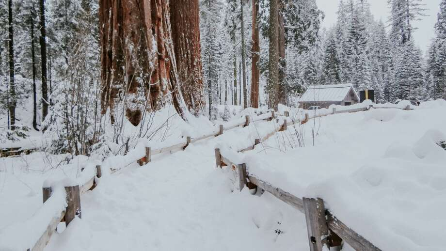 In this file photo, a view of Kings Canyon National Park. More than 120 visitors and staff who became snowbound in a Kings Canyon resort due to recent storms have been freed. Photo: ElOjoTorpe/Getty Images