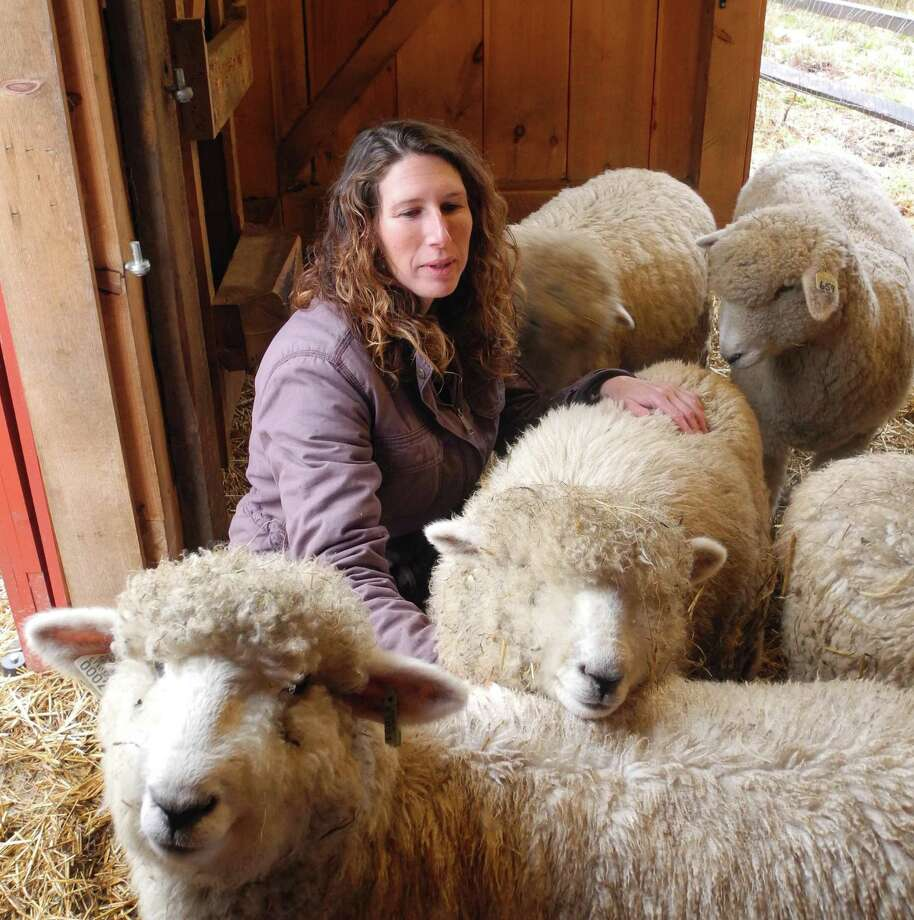 Farmer Whitney Freeman with her sheep in the barn at Henny Penny Farm in Ridgefield in 2016. Photo: Macklin Reid / / Ridgefield Press