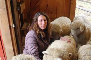 Farmer Whitney Freeman with her sheep in the barn at Henny Penny Farm in Ridgefield in 2016.