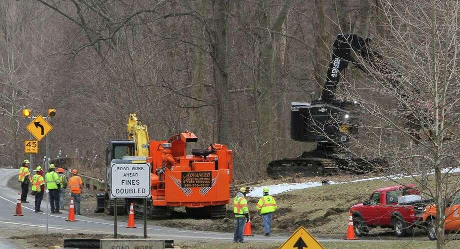 Safety vs  aesthetics: Merritt tree-clearing slated for