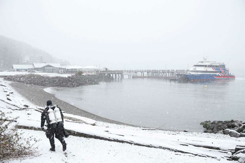 February cold February 2019 was the third coldest February on record since recordkeeping started at Sea-Tac Airport in 1945. The average temperature was 36.7 degrees.