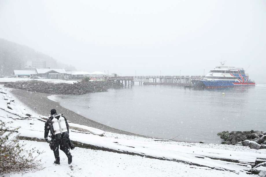 Alex Engle prepares to go diving near the water taxi dock as snow falls Friday afternoon in West Seattle, beginning what is expected to be a heavy storm that continues into Saturday and brings several inches of snow to Seattle, Jan. 8, 2019. Engle dives several times a week and wears a dry suit to protect himself from the cold. Photo: Genna Martin, Seattlepi.com / SeattlePI