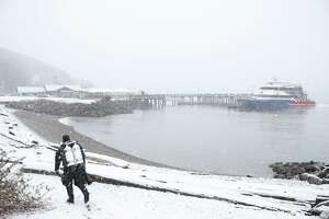 Alex Engle prepares to go diving near the water taxi dock as snow falls Friday afternoon in West Seattle, beginning what is expected to be a heavy storm that continues into Saturday and brings several inches of snow to Seattle, Jan. 8, 2019. Engle dives several times a week and wears a dry suit to protect himself from the cold.