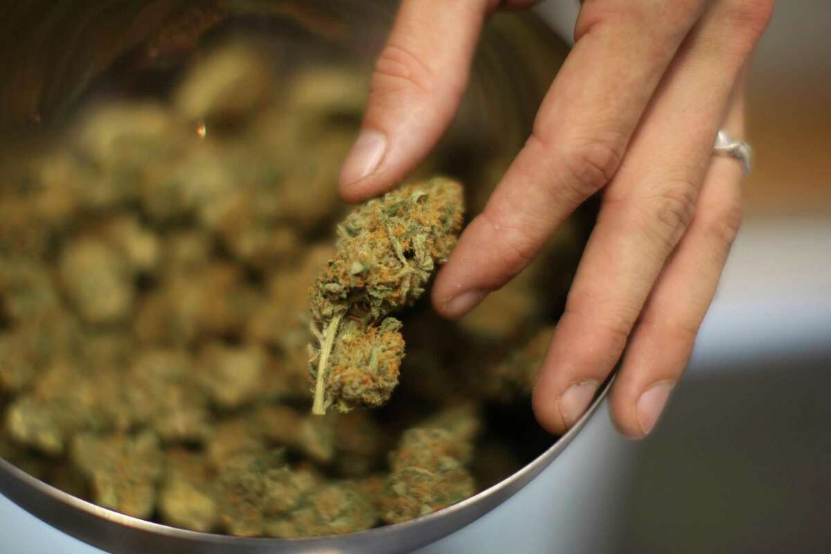 A dried marijuana flower.