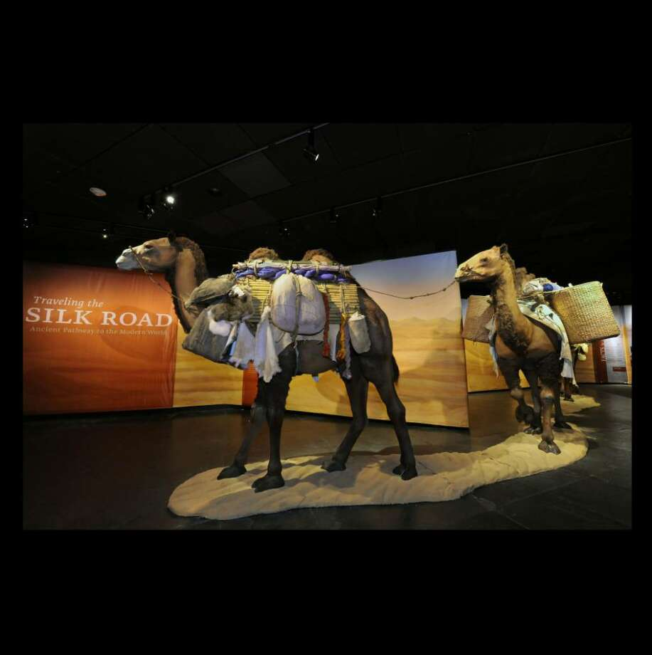 As you enter the exhibit, you encounter three towering camels, tethered in single file and laden with cargo. (American Museum of Natural History) / Photo By: Roderick Mickens© AMERICAN MUSEUM OF NATURAL HISTORY