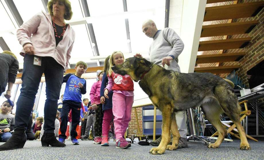 Holly Shattuck, a kindergartner at North Mianus School pets Kili, a seven-year-old German Shepherd guide dog that was visiting the chidren at the school on Friday, Feb. 8, 2019 in Greenwich, Connecticut. Alan Gunzburg, who is legally blind and Kili did a presentation about service dogs and guide dogs. Photo: Matthew Brown / Hearst Connecticut Media / Stamford Advocate