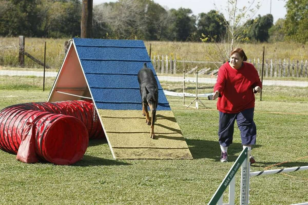 Place: 12800 block of Susanna Lane, Alief Date: Feb. 8, 2019Details: Doberman Pinscher enthusiast Elaine Richman, 66, was found dead in her backyard after an apparent dog attack. Police were called to her home for a welfare check after she hadn't been seen at her dog training classes for two days. Police said she was covered with dog bites on her face, arms and hands.